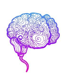 cerebro (1) - copia